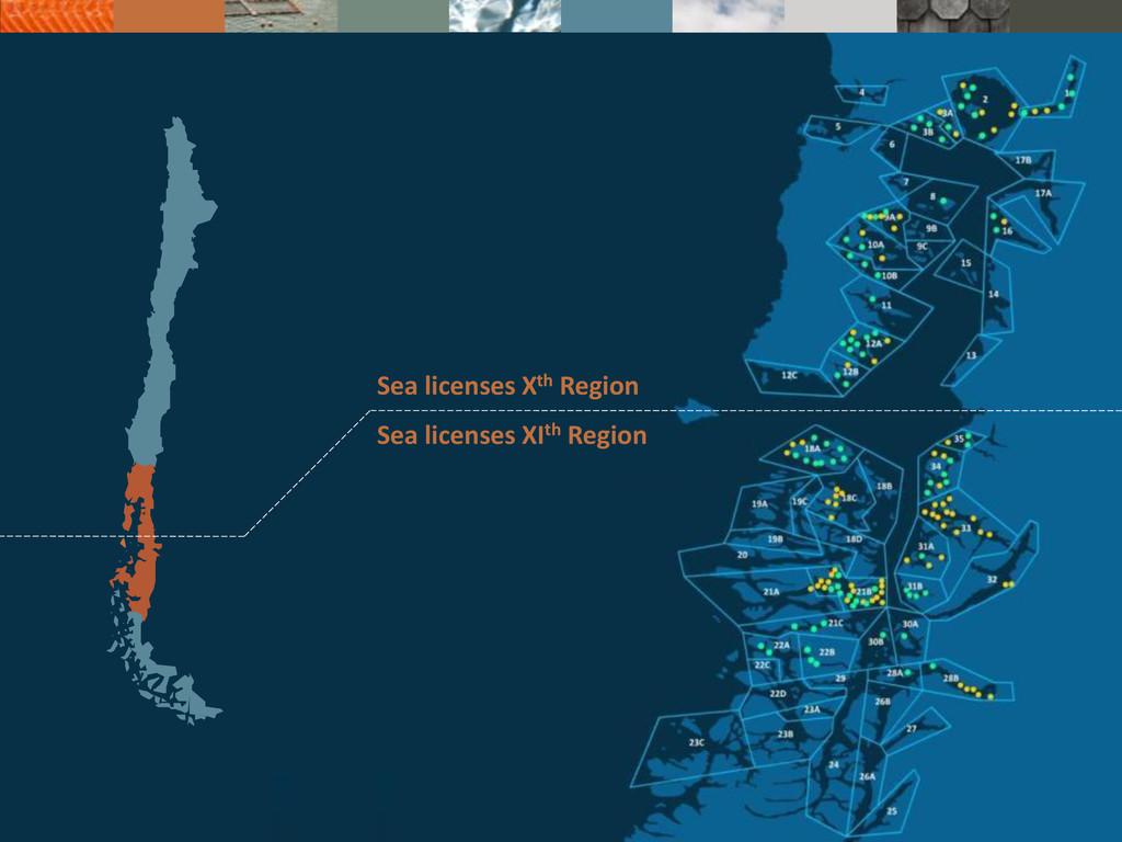 Sea licenses XIth Region Sea licenses Xth Region