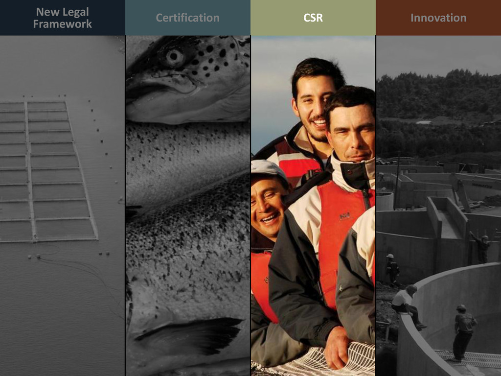 New Legal Framework Certification Innovation CSR