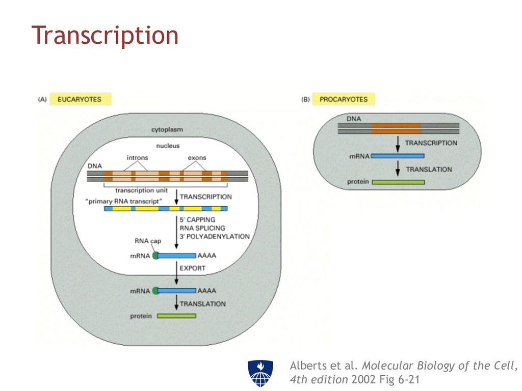 Transcription Alberts et al. Molecular Biology ...