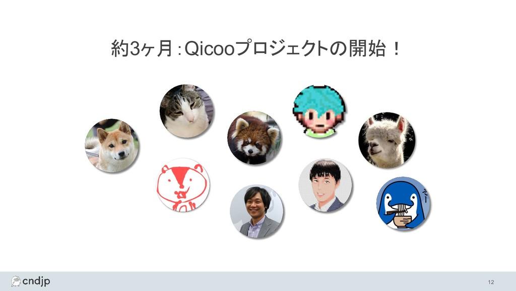 約3ヶ月:Qicooプロジェクトの開始! 12