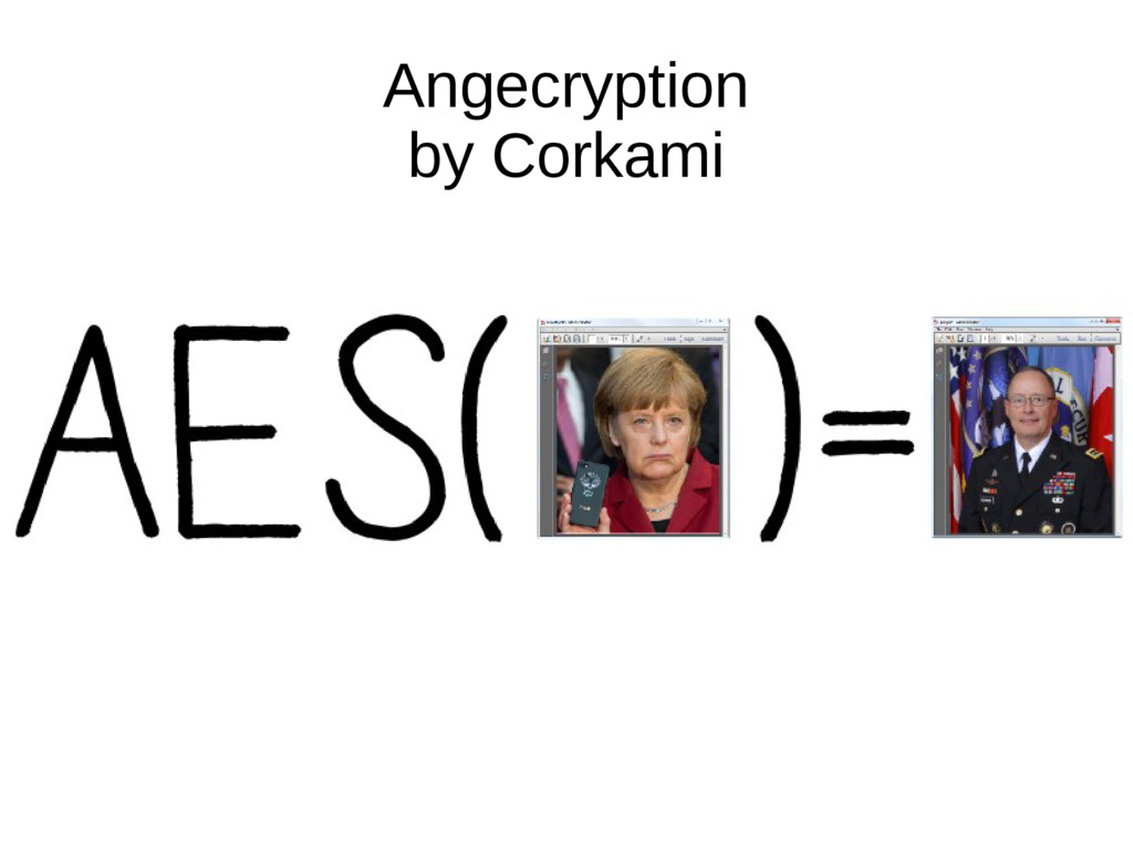 Angecryption by Corkami