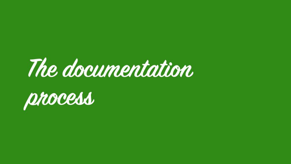 The documentation process