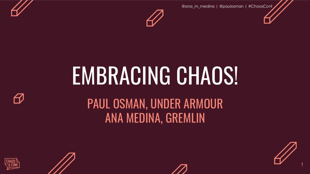 EMBRACING CHAOS!