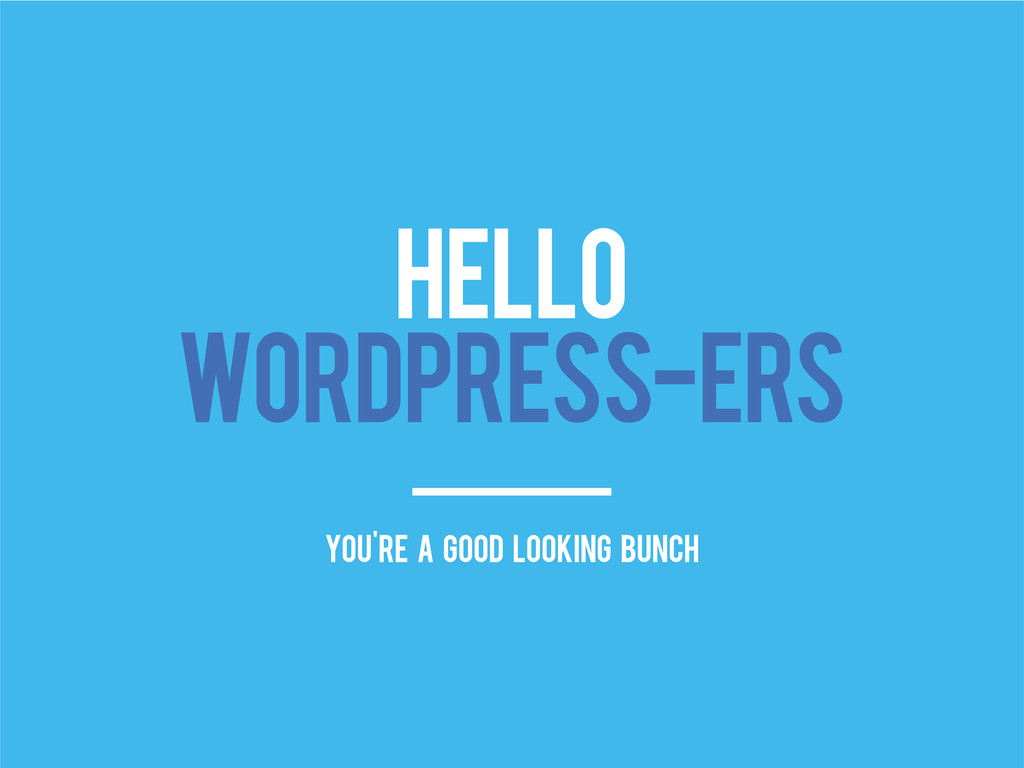 HELLO WORDPRESS-ERS you're a good looking bunch