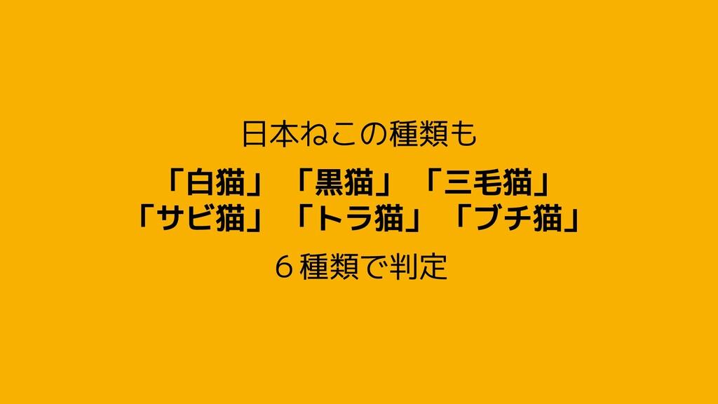 日本ねこの種類も 「白猫」 「黒猫」 「三毛猫」 「サビ猫」 「トラ猫」 「ブチ猫」 6種類で...