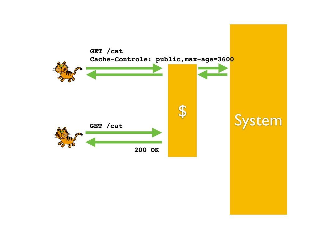 $ System GET /cat Cache-Controle: public,max-a...