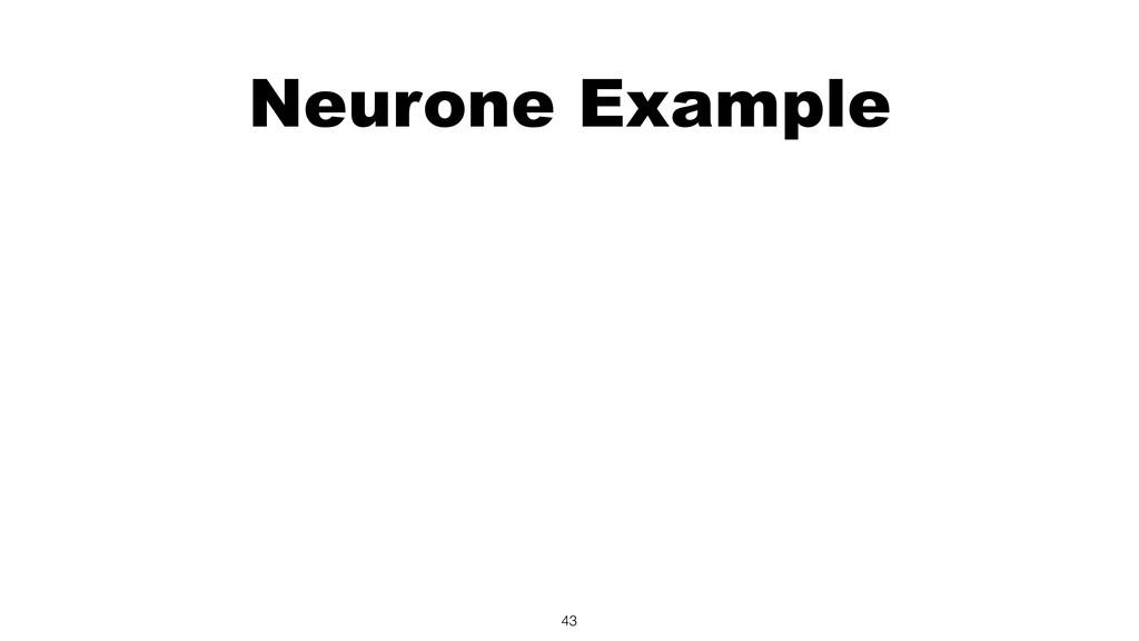 Neurone Example 43