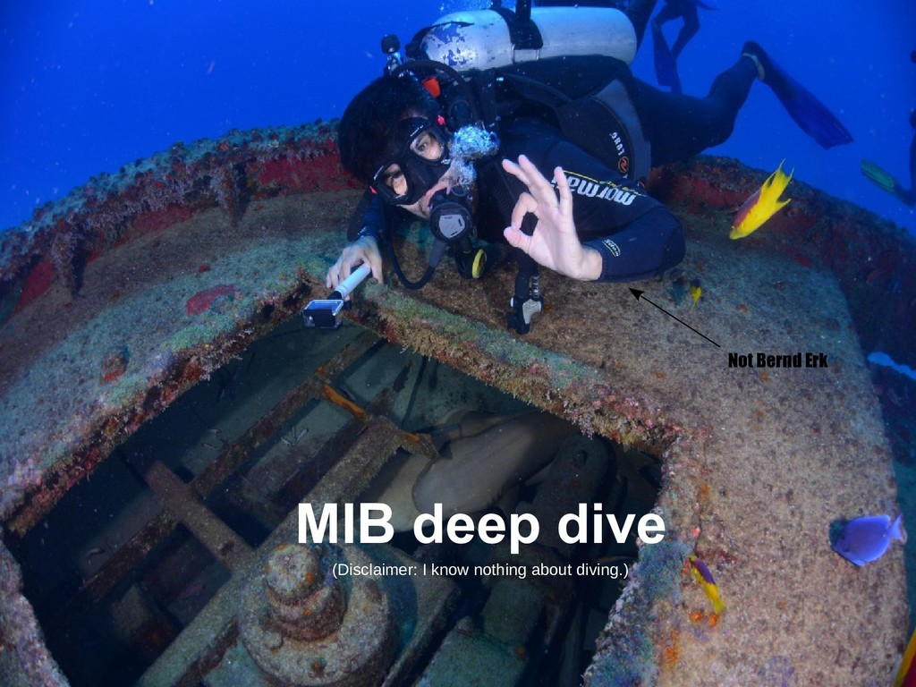 MIB deep dive Not Bernd Erk (Disclaimer: I know...