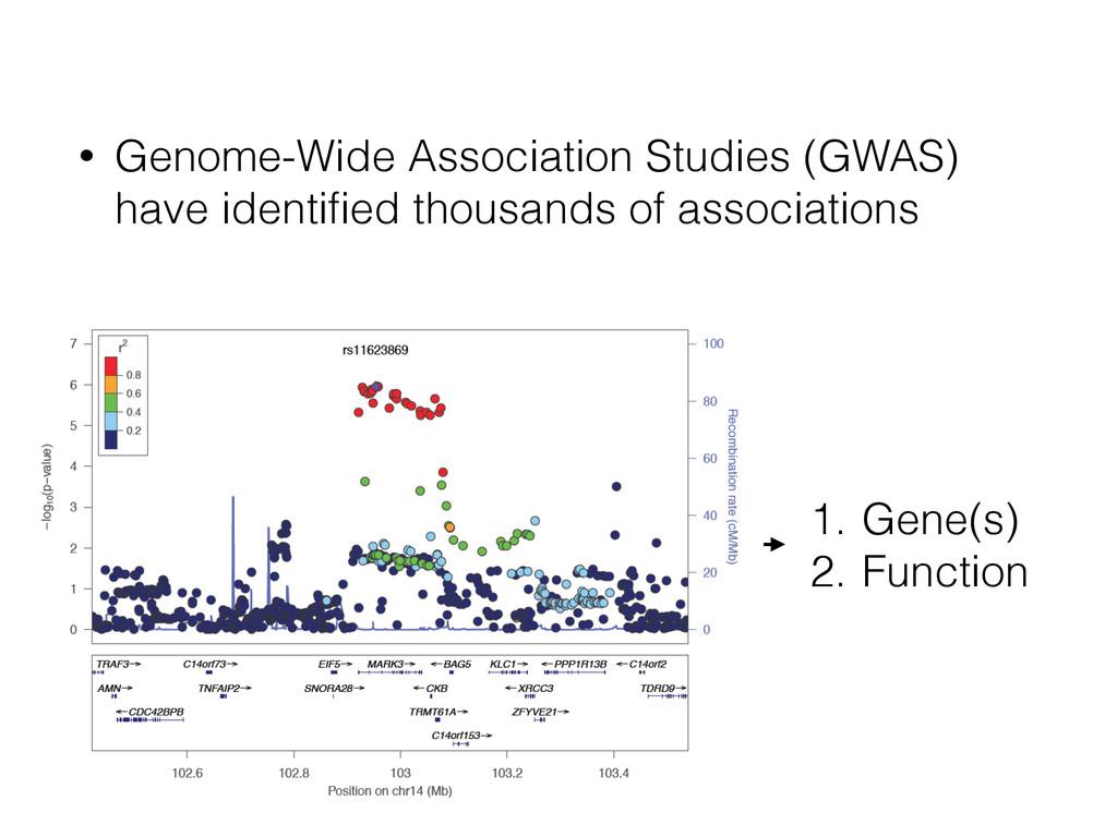 • Genome-Wide Association Studies (GWAS) have i...