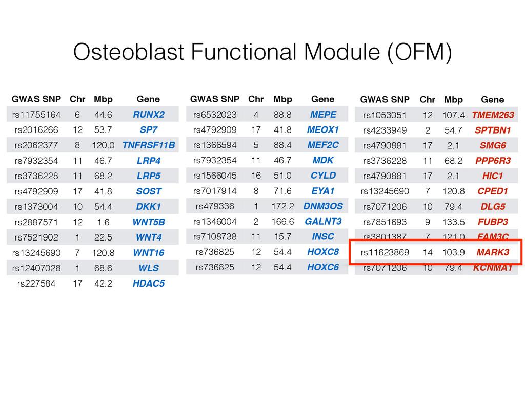 Osteoblast Functional Module (OFM) GWAS SNP Chr...