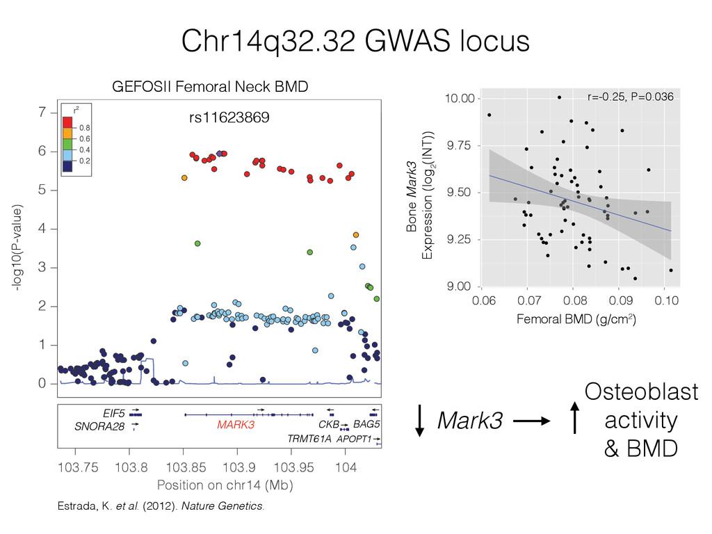 Chr14q32.32 GWAS locus Estrada, K. et al. (2012...