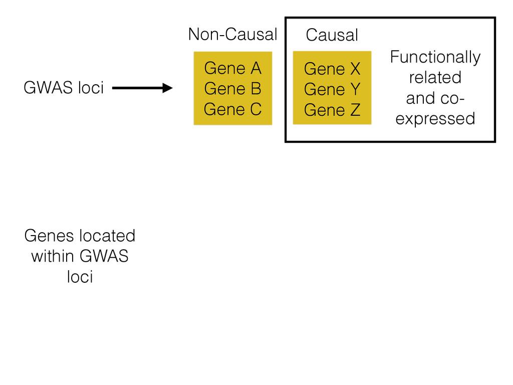 Gene X Gene Y Gene Z Gene A Gene B Gene C Non-C...