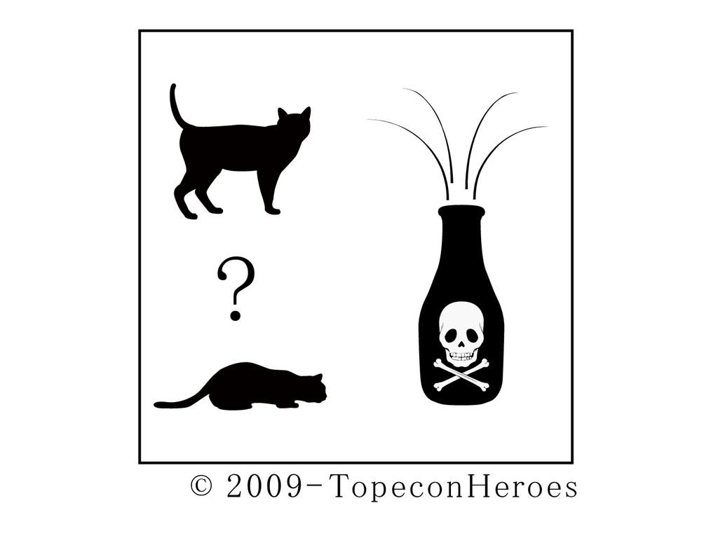 ? © 2009- TopeconHeroes