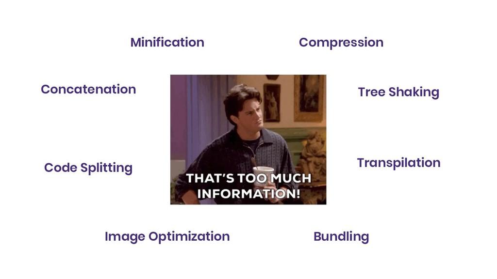 Minification Concatenation Tree Shaking Transpi...