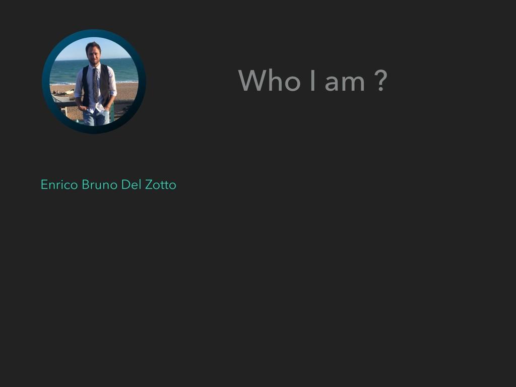 Who I am ? Enrico Bruno Del Zotto