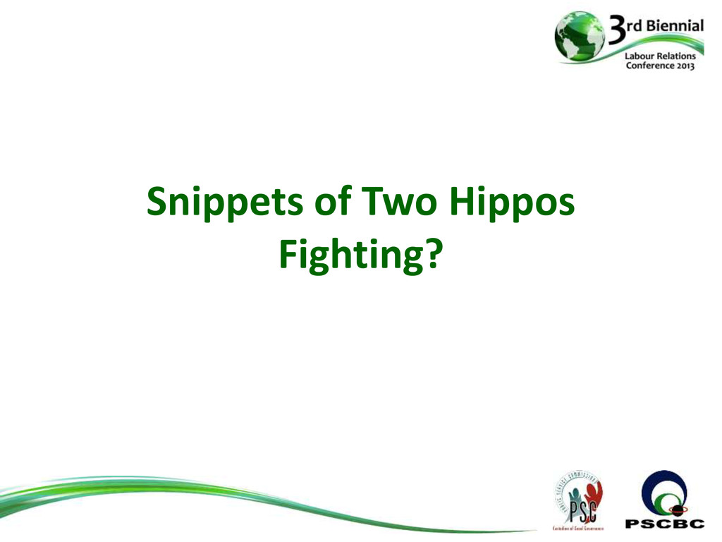 Snippets of Two Hippos Fighting?