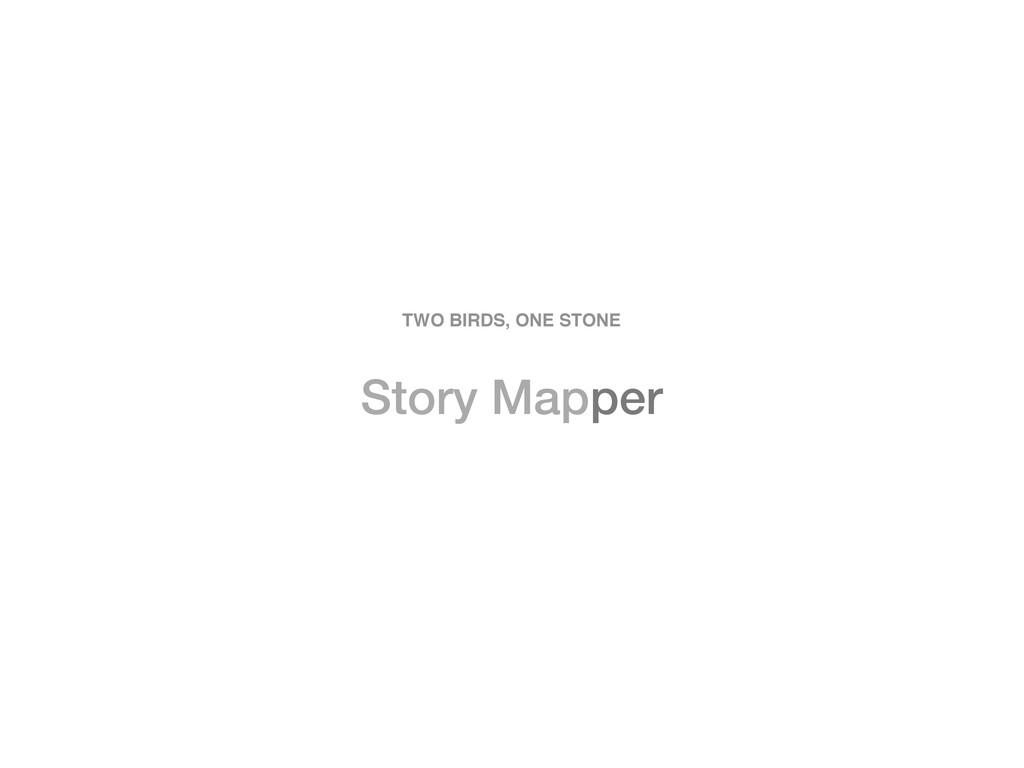 Story Mapper TWO BIRDS, ONE STONE