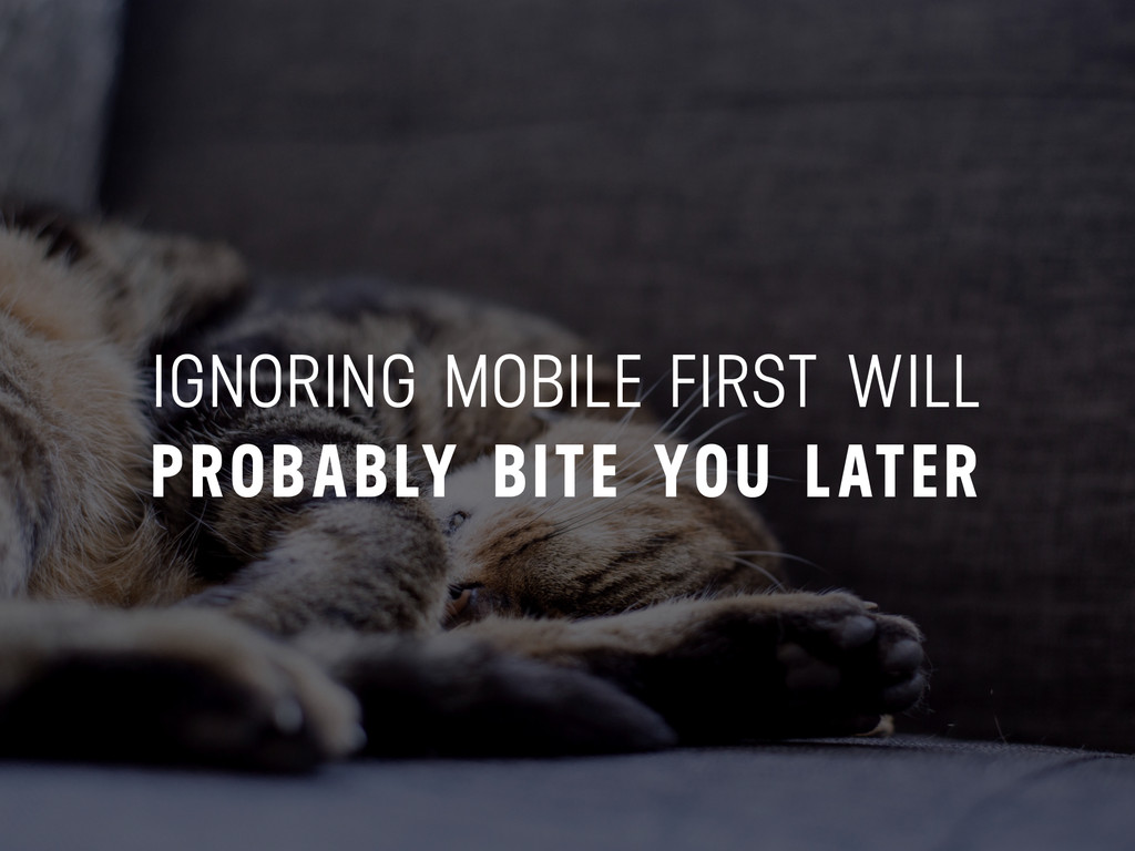 IGNORING MOBILE FIRST WILL PROBABLY BITE YOU LA...