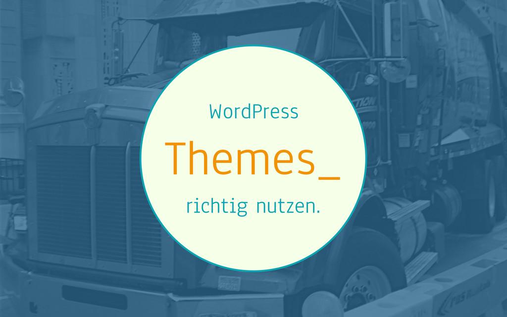 WordPress Themes_ richtig nutzen.