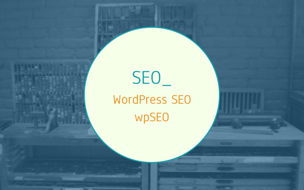 SEO_ WordPress SEO wpSEO