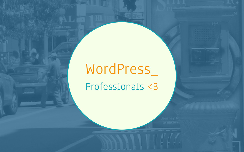 WordPress_ Professionals <3