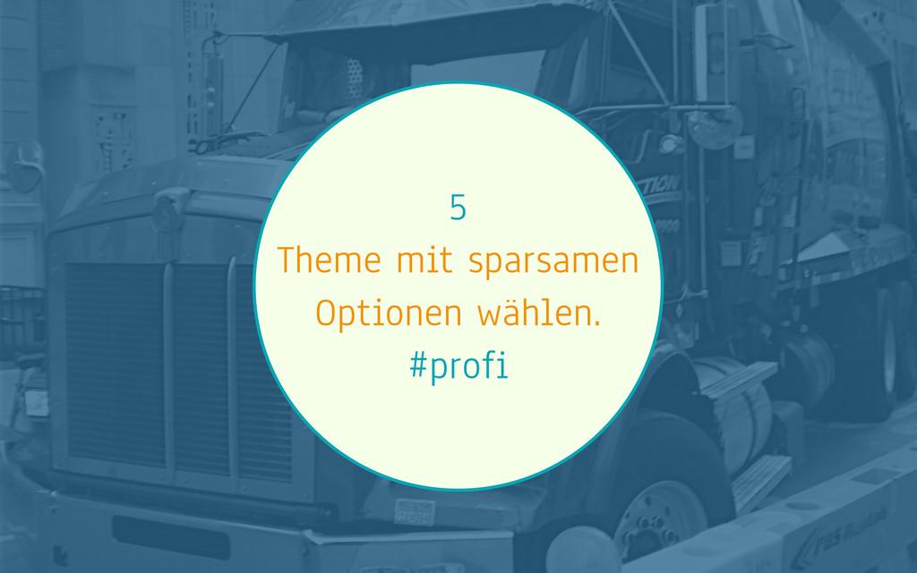 5 Theme mit sparsamen Optionen wählen. #profi