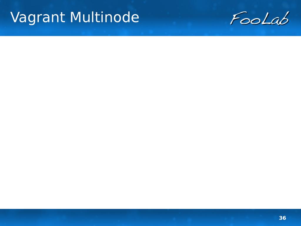 36 Vagrant Multinode