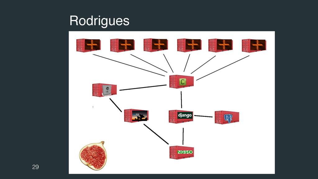 29 Rodrigues