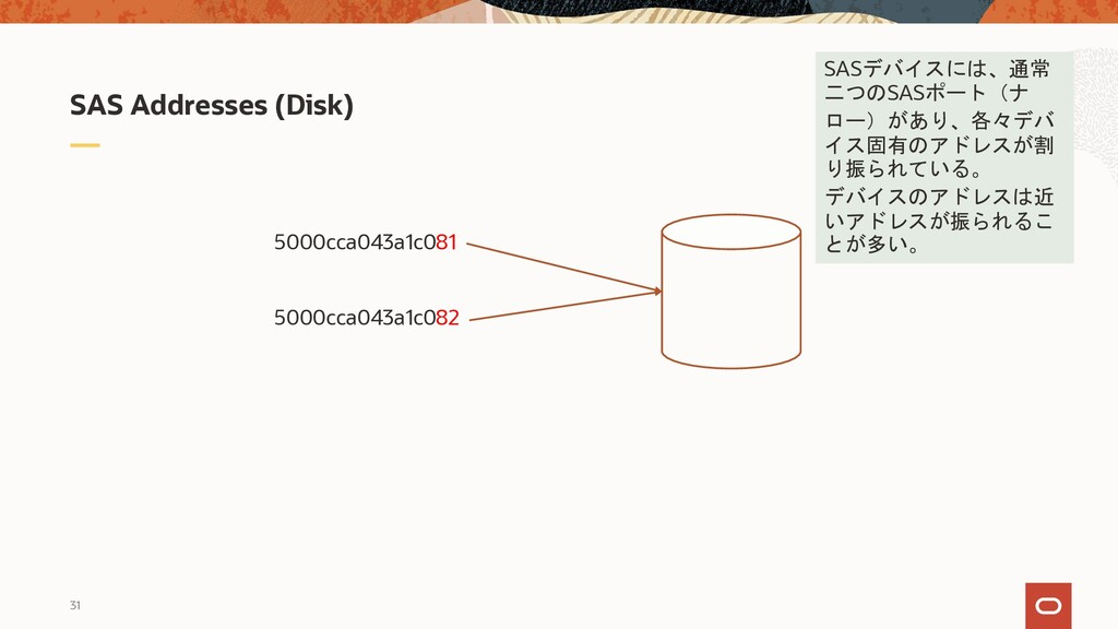 31 SAS Addresses (Disk) 5000cca043a1c081 5000cc...