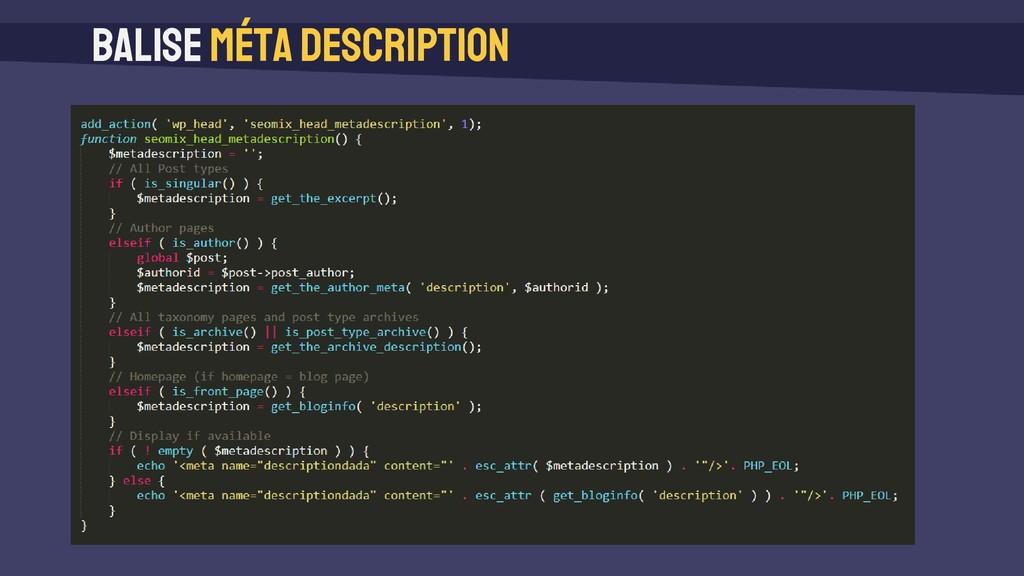 Balise méta description add_action( 'wp_head', ...