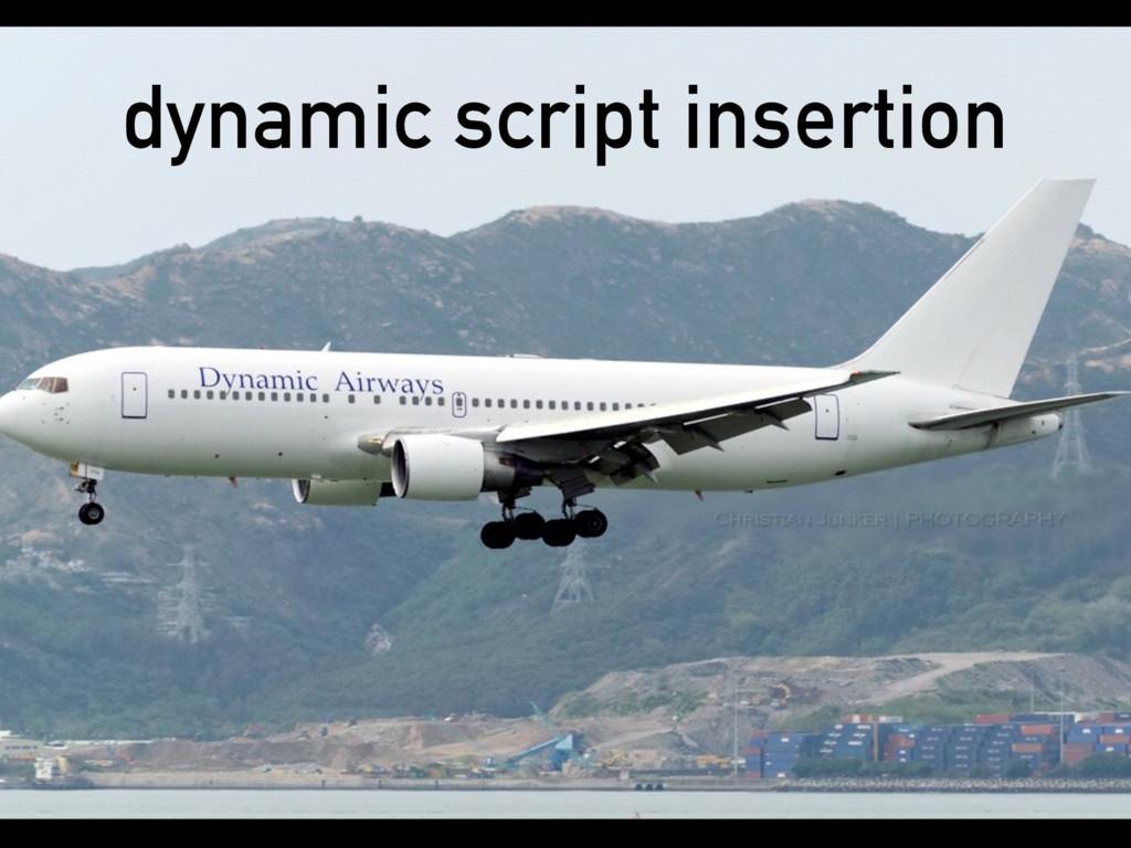 dynamic script insertion