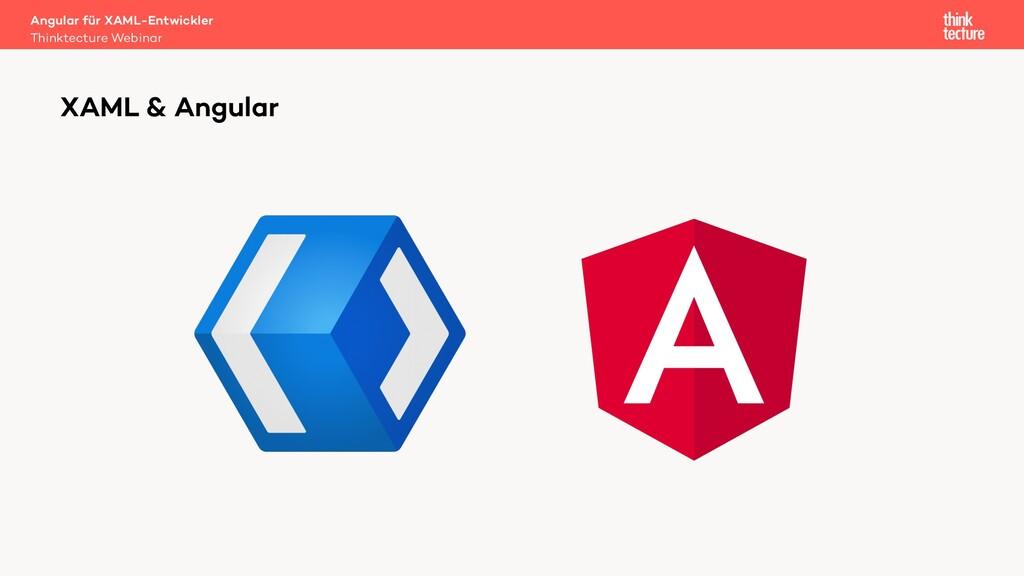 XAML & Angular Angular für XAML-Entwickler Thin...
