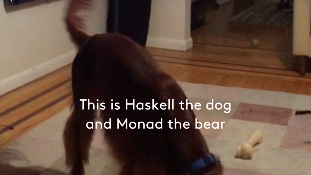This is Haskell the dog and Monad the bear