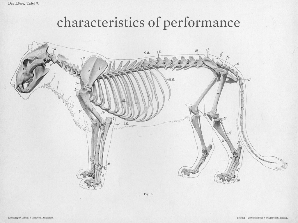 characteristics of performance