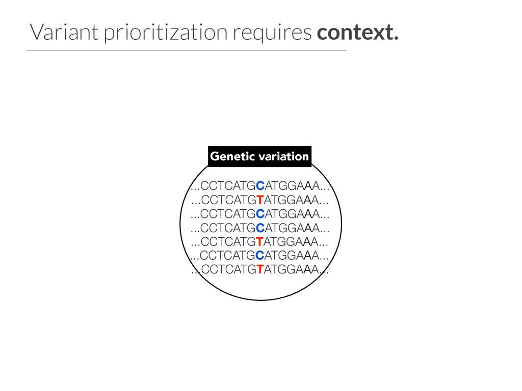 ...CCTCATGCATGGAAA... Genetic variation ...CCTC...