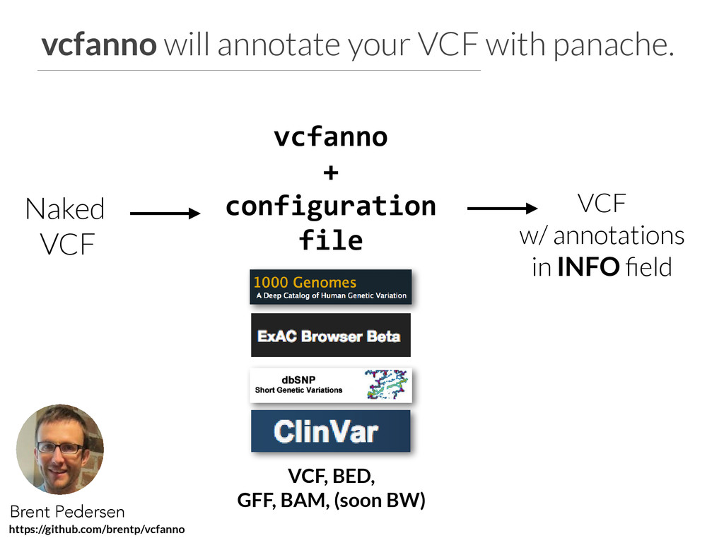 vcfanno will annotate your VCF with panache. Na...