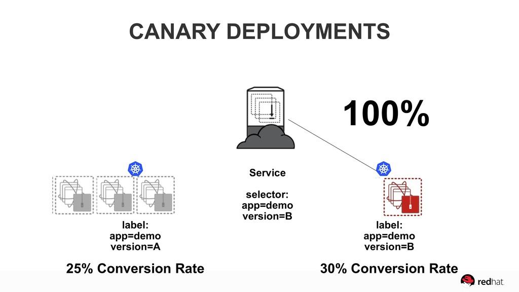 25% Conversion Rate 30% Conversion Rate 100% Ve...