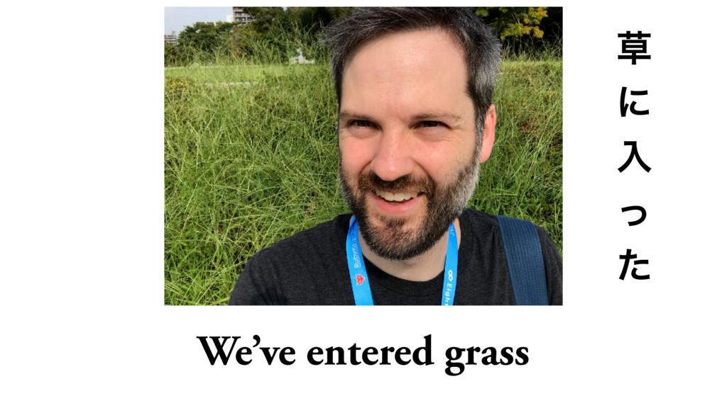 We've entered grass  ʹ ೖ ͬ ͨ