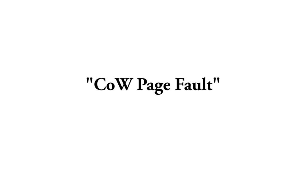 """""""CoW Page Fault"""""""