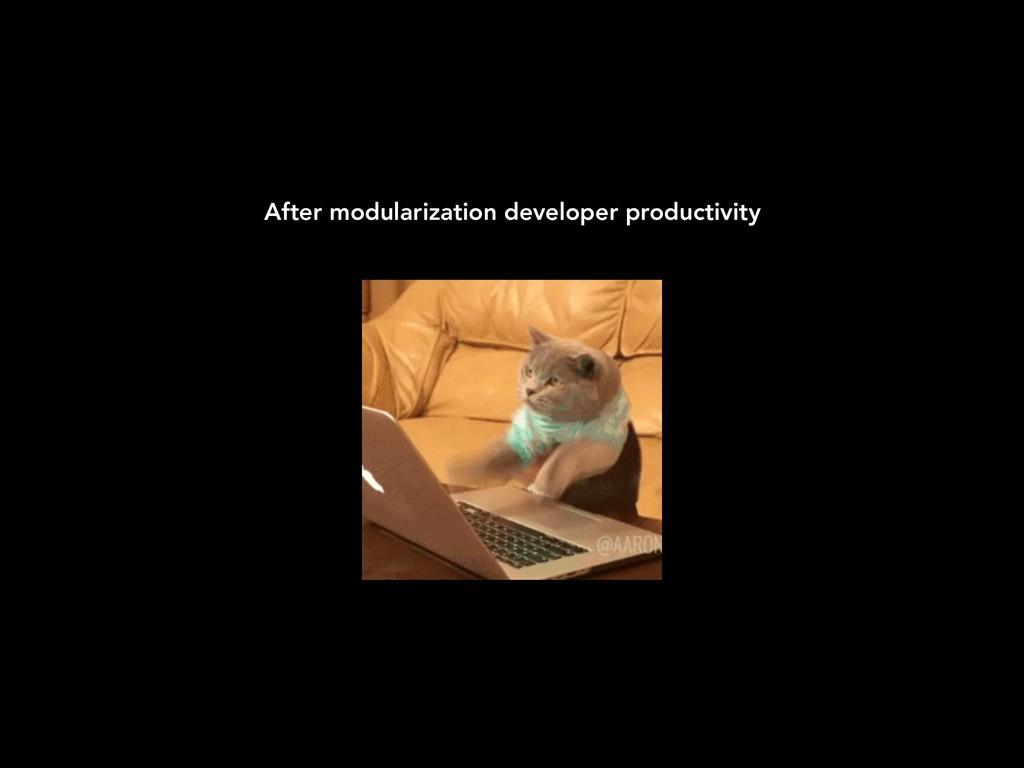 After modularization developer productivity
