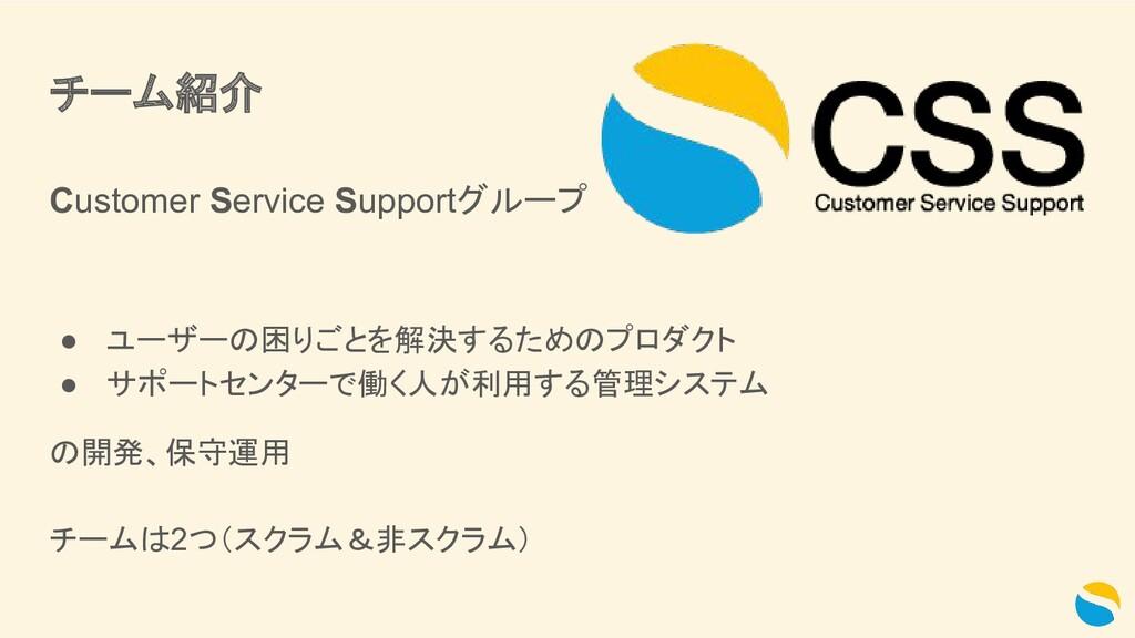 チーム紹介 Customer Service Supportグループ ● ユーザーの困りごとを...
