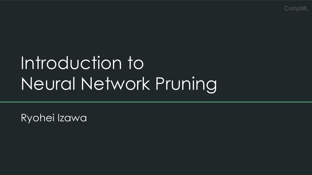 CompML Introduction to Neural Network Pruning R...