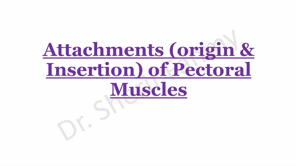 Attachments (origin & Insertion) of Pectoral Mu...