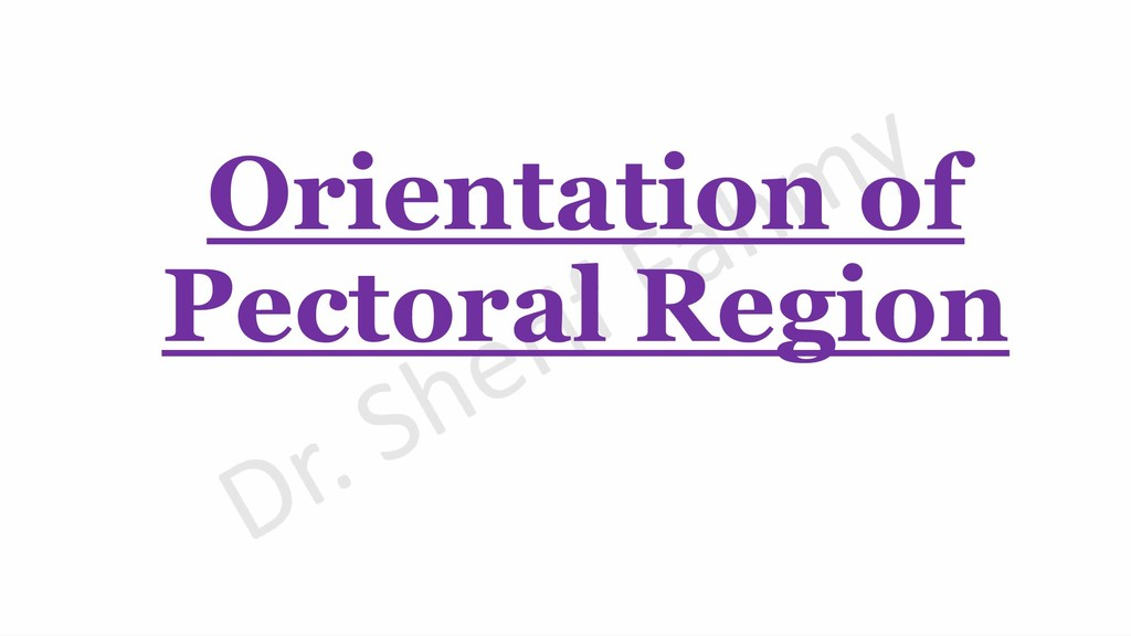 Orientation of Pectoral Region