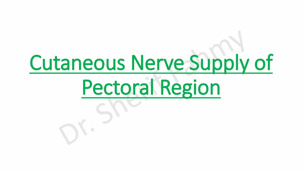 Cutaneous Nerve Supply of Pectoral Region