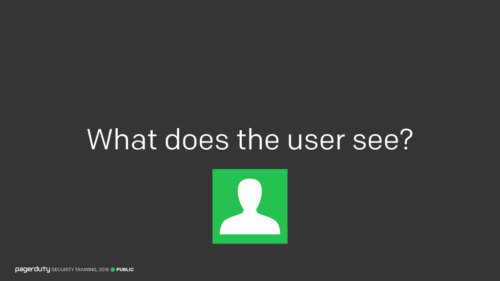 What does the user see? PUBLIC SECURITY TRAININ...