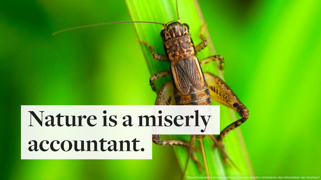 Nature is a miserly accountant. https://www.dei...