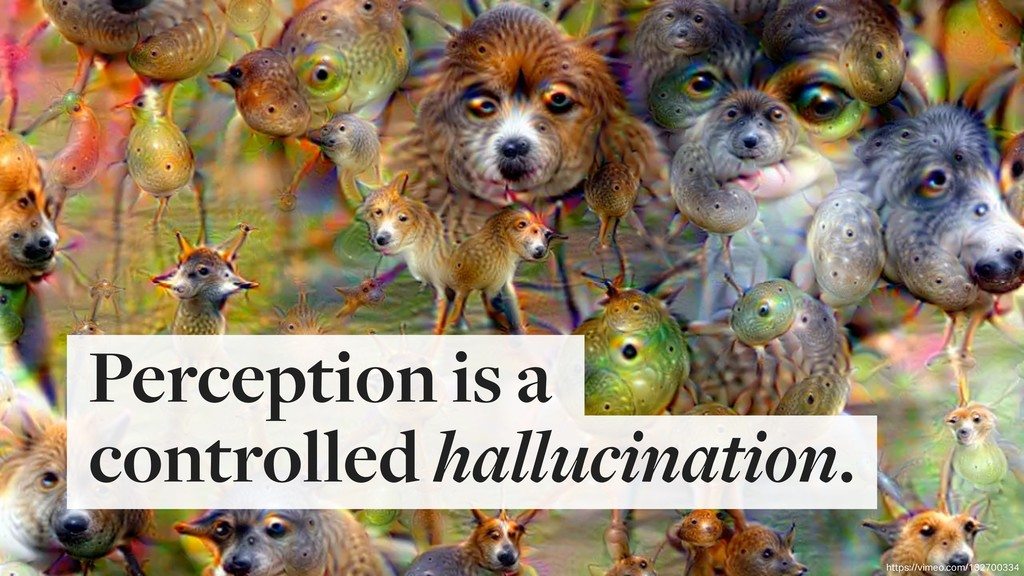 Perception is a  controlled hallucination. htt...