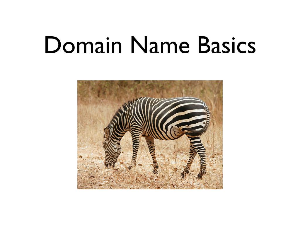 Domain Name Basics