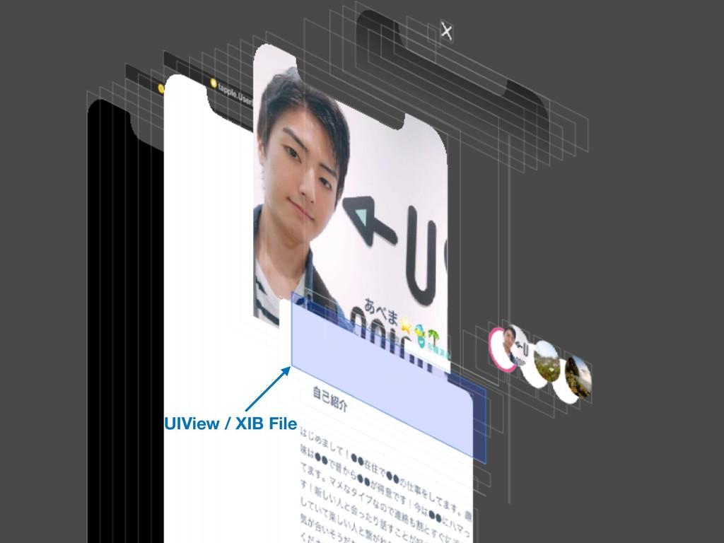 UIView / XIB File